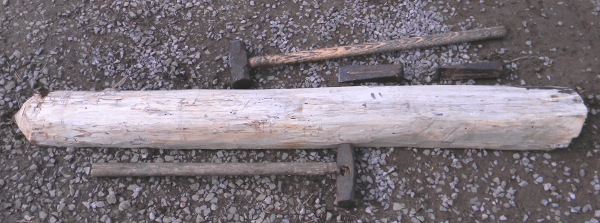 Hickory log